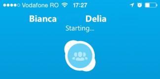 skype teleconferinte