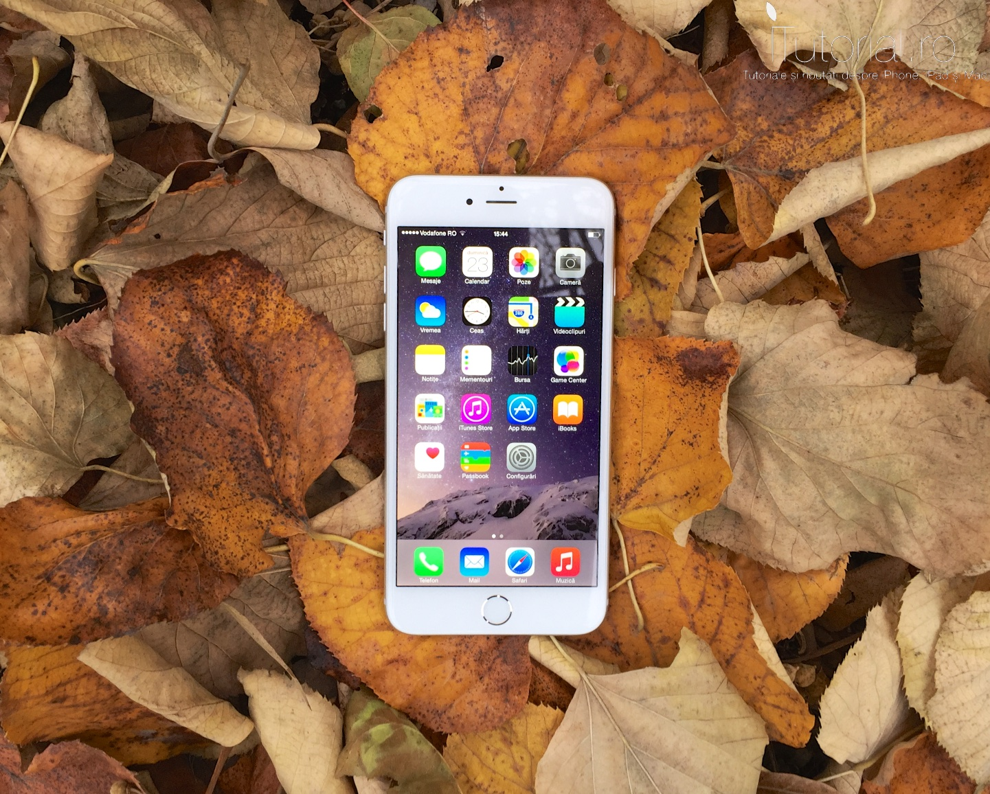 iphone 6 plus review #itutorial.ro (4)
