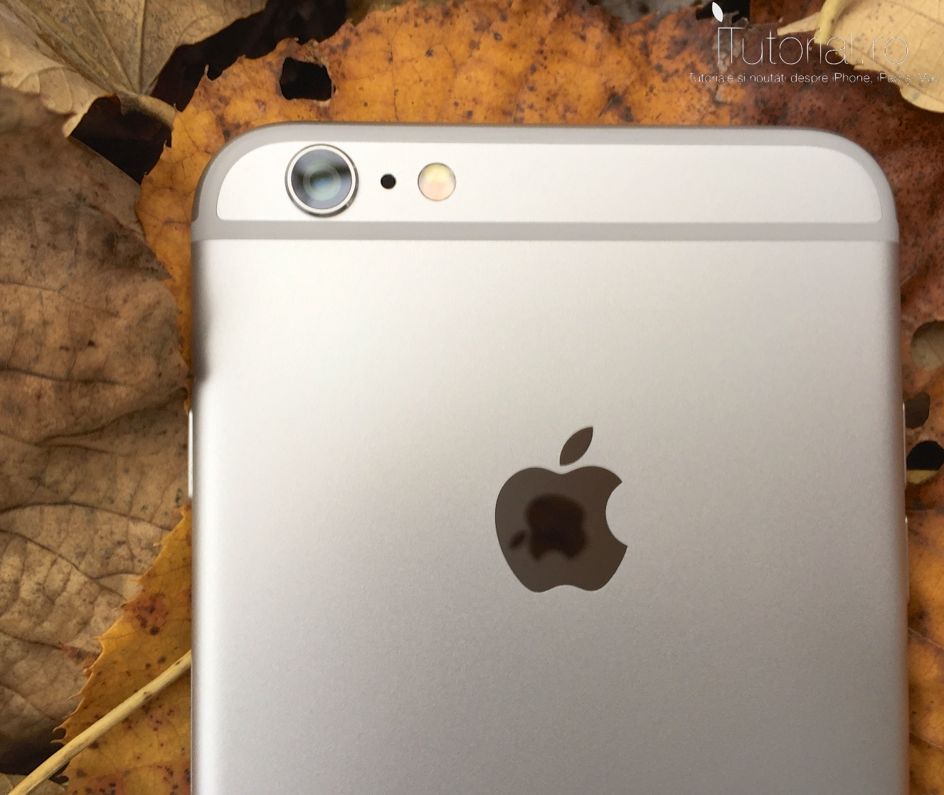 iphone 6 plus review #itutorial.ro (6)