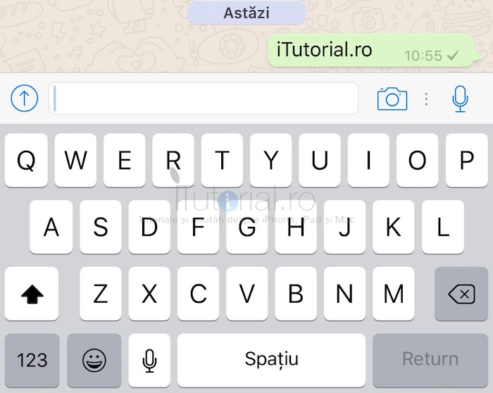 WhatsApp mesaj trimis