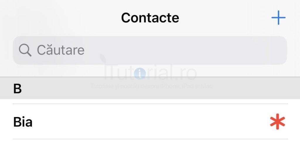 contacte urganta