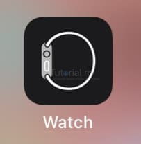 watch ios 14.2